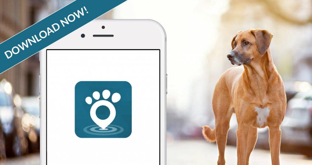Neue App: Tractive GPS Tierortung