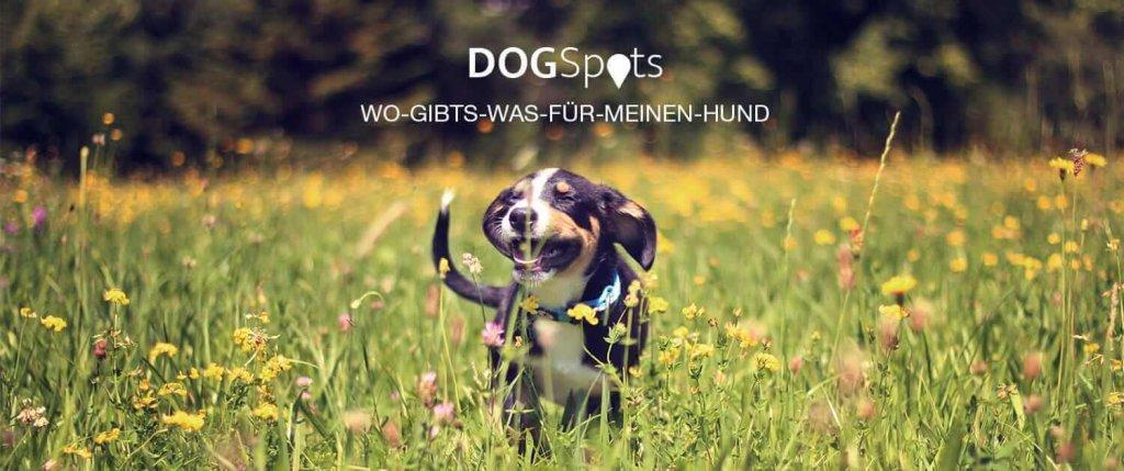 DOGSpots – Alles für den Hund