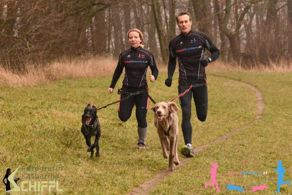 Canicross – sportliches Zusammenspiel zwischen Hund und Mensch