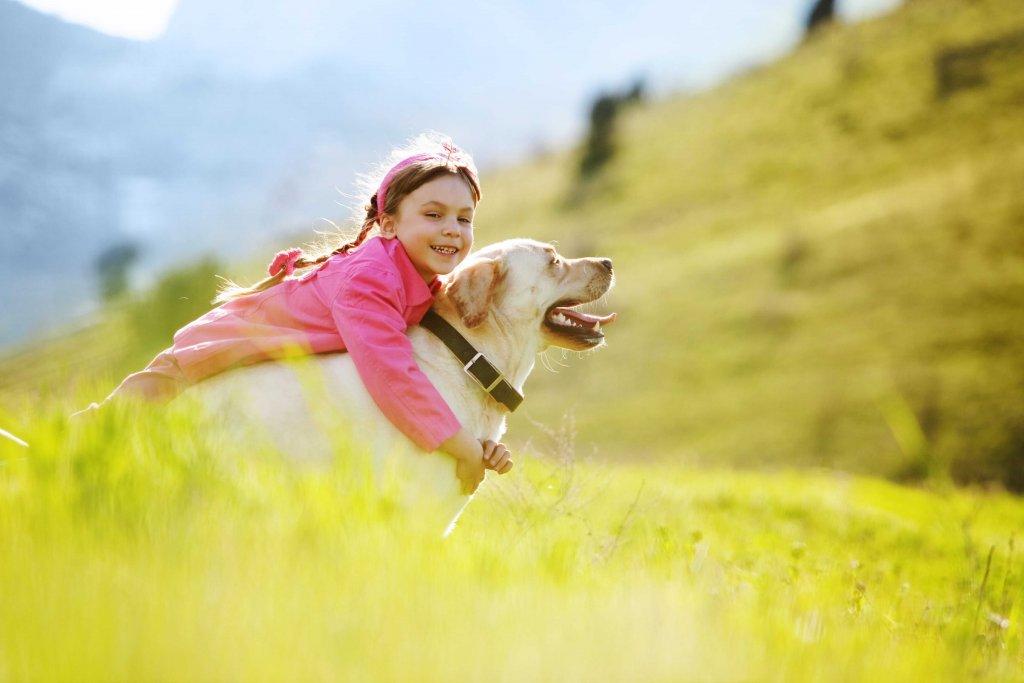 Kuscheln mit Hund tut gut: Erfahre jetzt die 3 Vorteile