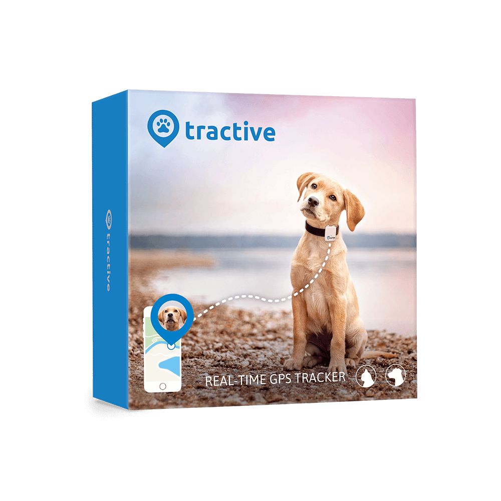 Tractive Gps for dogs