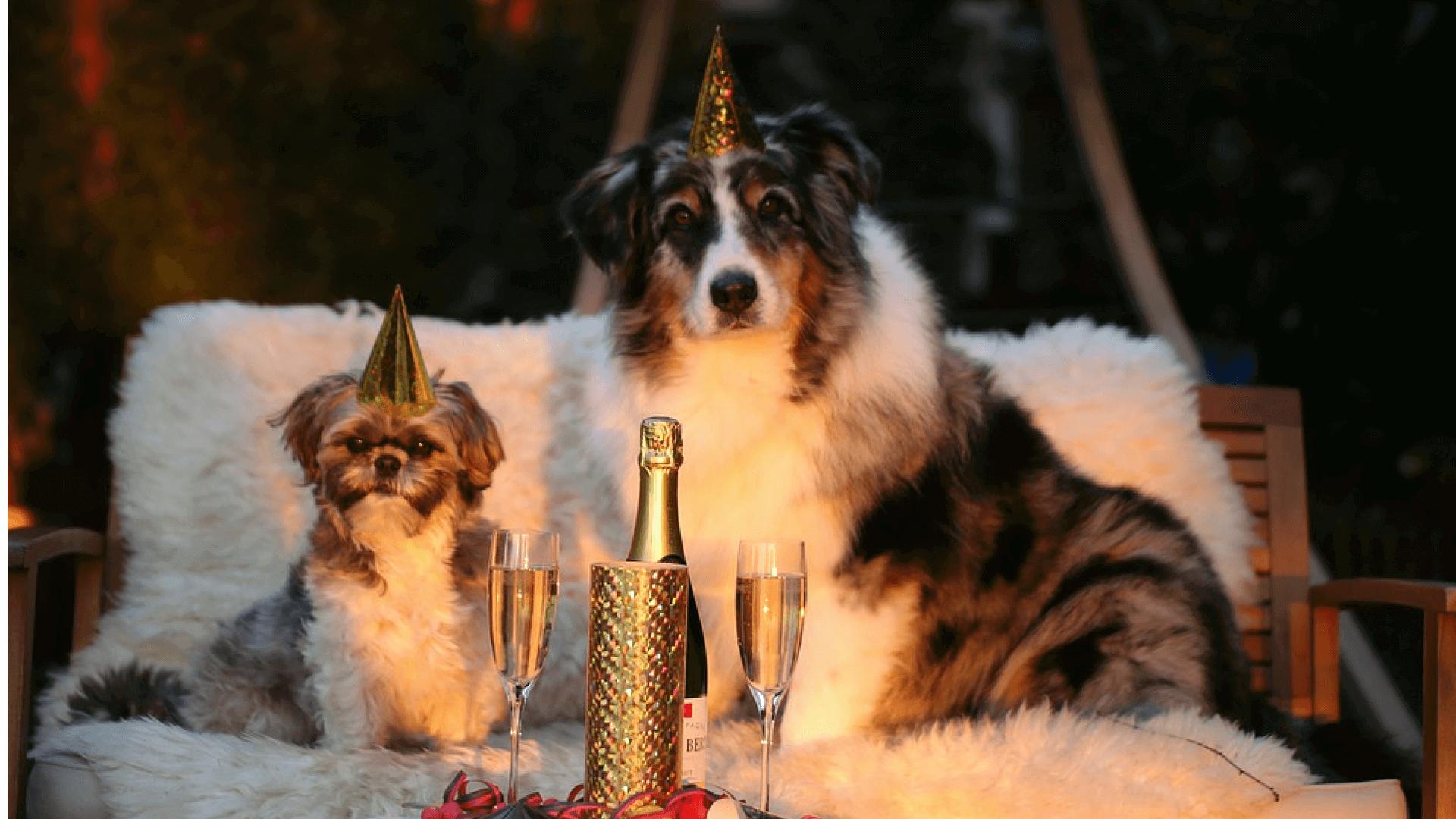 Wir definieren unsere Neujahrsvorsätze um unsere Kunden glücklich zu machen