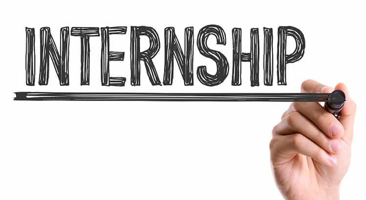 Working at Tractive – HR internship insights