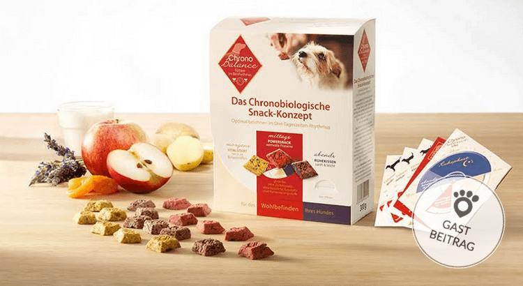 ChronoBalance  – Füttern im Biorhythmus des Hundes