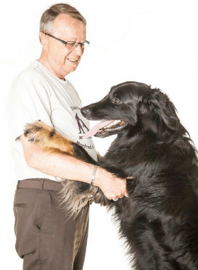 Eine Reise mit Hund nach Portugal