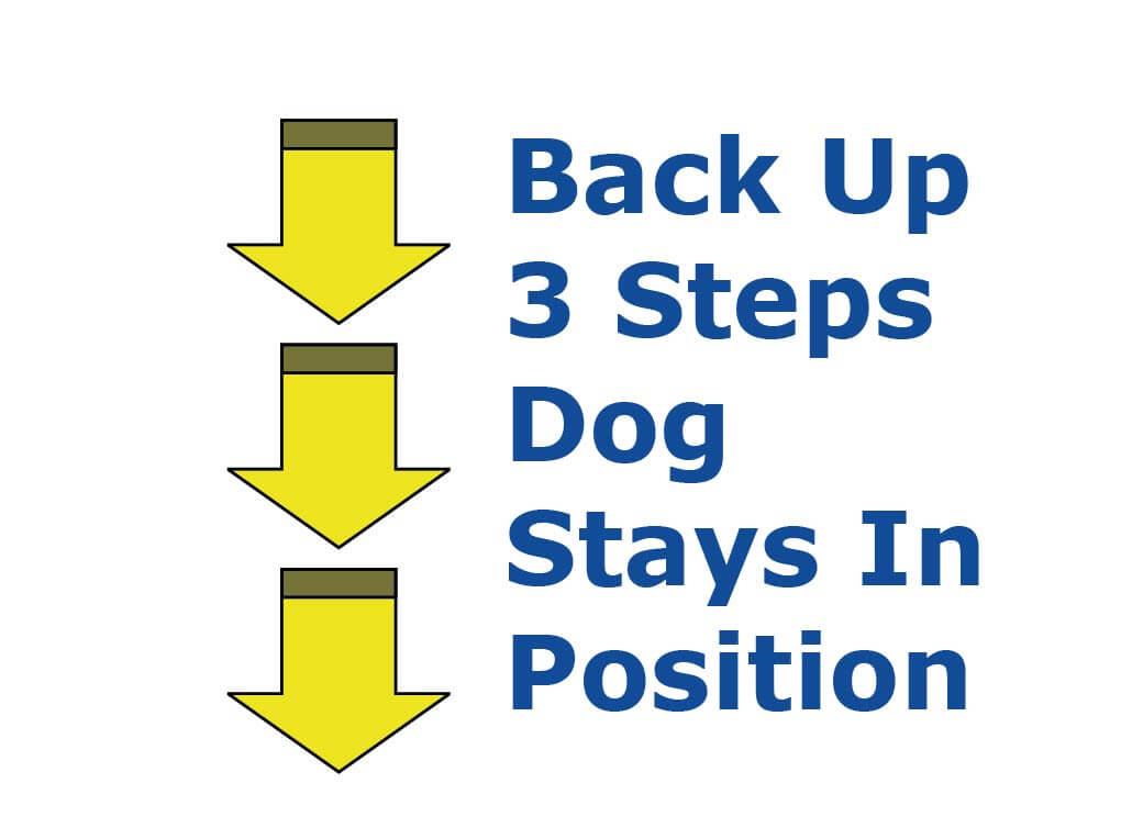 Back Up 3 steps