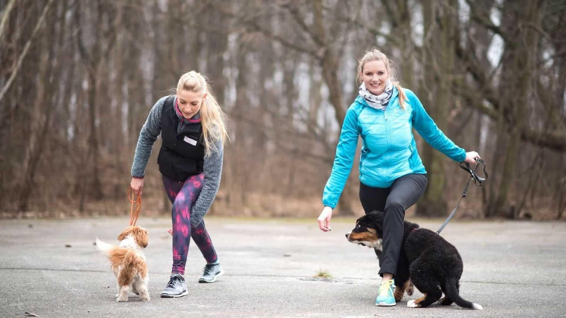 Fit werden mit Hund: Ausfallschritte