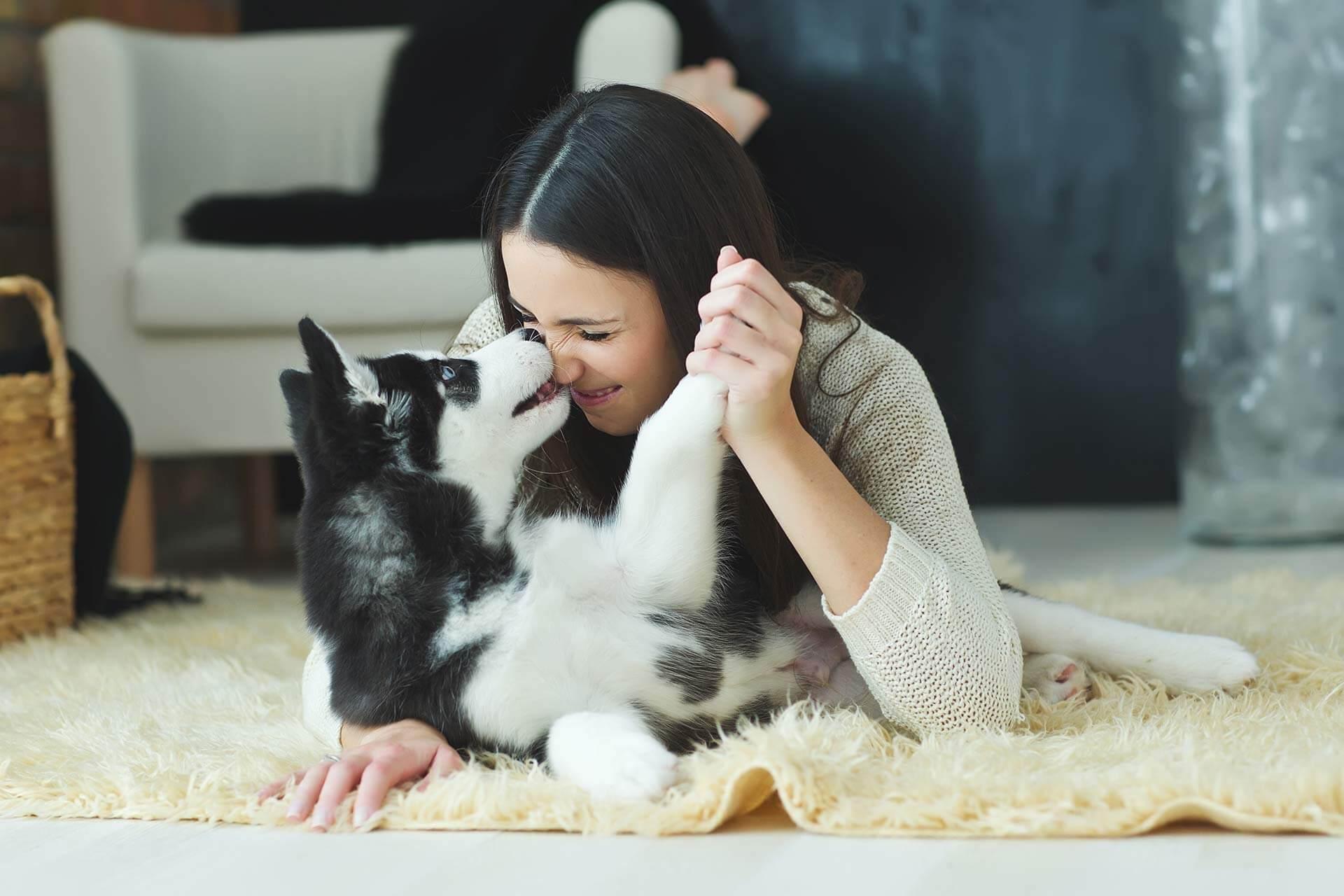 Hundeglück: 4 Gründe warum Hundebesitzer glücklicher sind