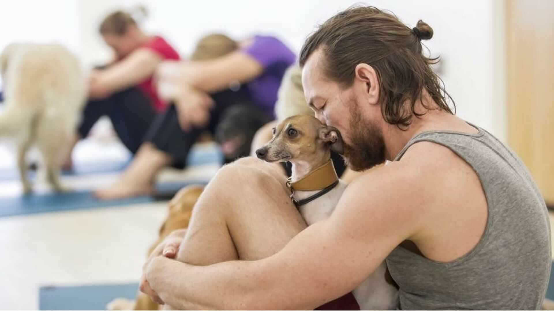 Hundesport mit Doga