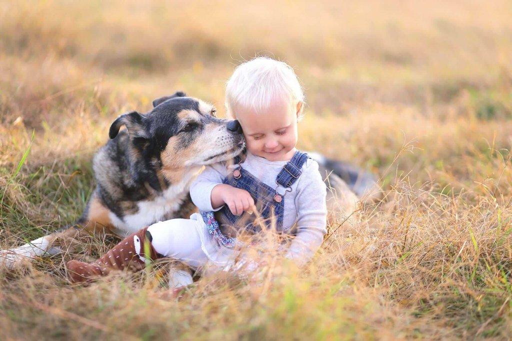 Hundejahre in Menschenjahre umrechnen - wir zeigen dir wie es geht!