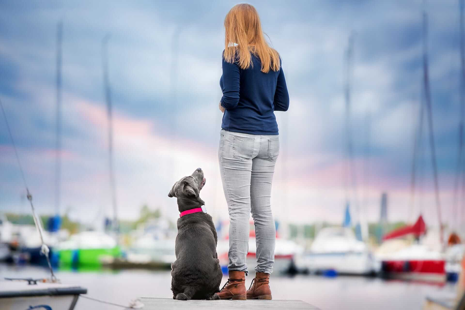 Dog with a Tractive GPS Tracker and owner