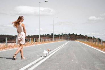 Depression bei Hunden zum Schulstart vermeiden mit Gassi gehen