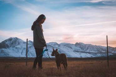Depression bei Hunden zum Schulstart vermeiden mit Spaziergängen