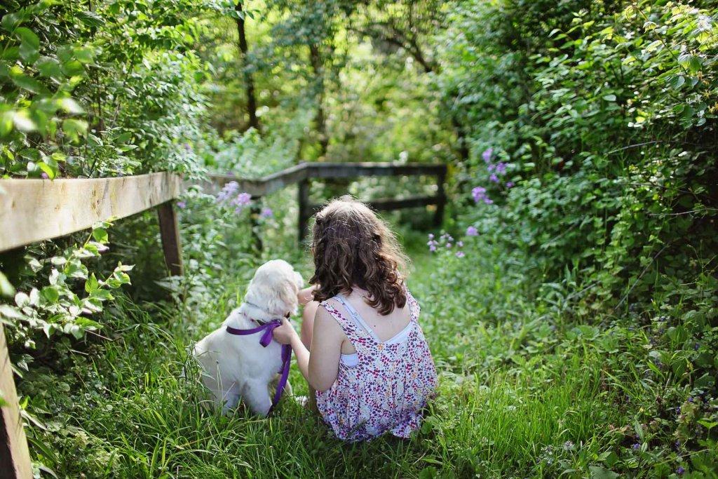 In 4 einfachen Schritten zum perfekten Garten für Hunde