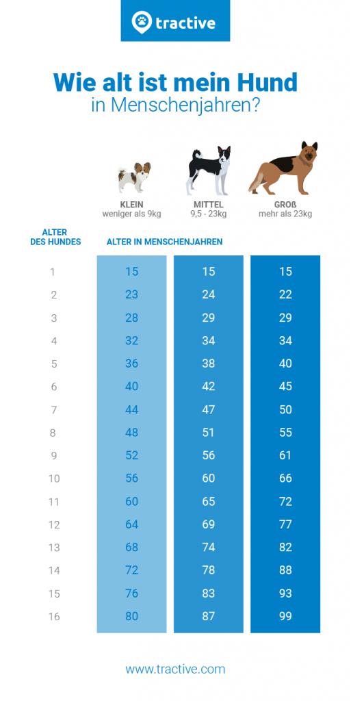 Hundejahre in Menschenjahre berechnen - Übersicht