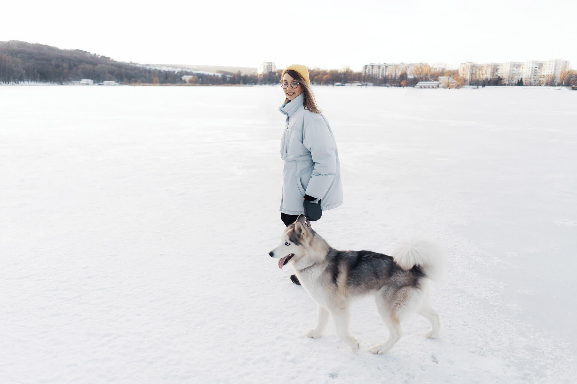 Frau beim Spaziergang mit Hund in Winterlandschaft