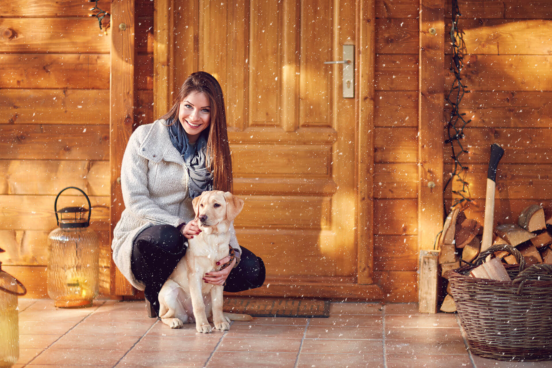 Why Are Dog Friendly Cottages Your Next Best Holiday Destination?