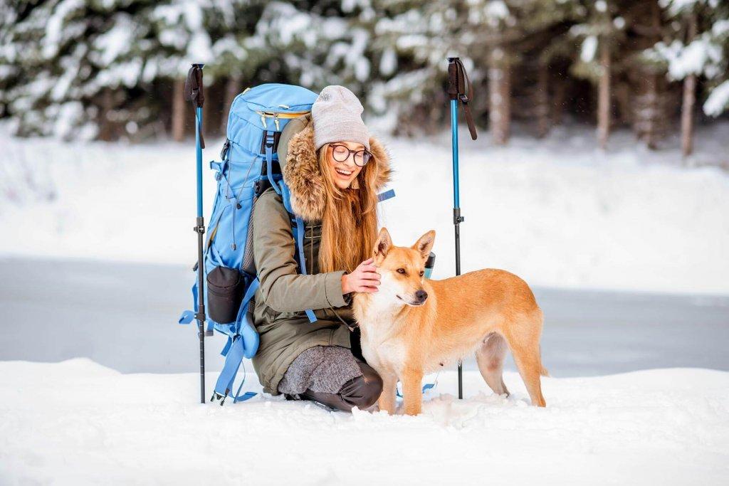 So wird dein Skiurlaub mit Hund perfekt: Alles was du wissen musst
