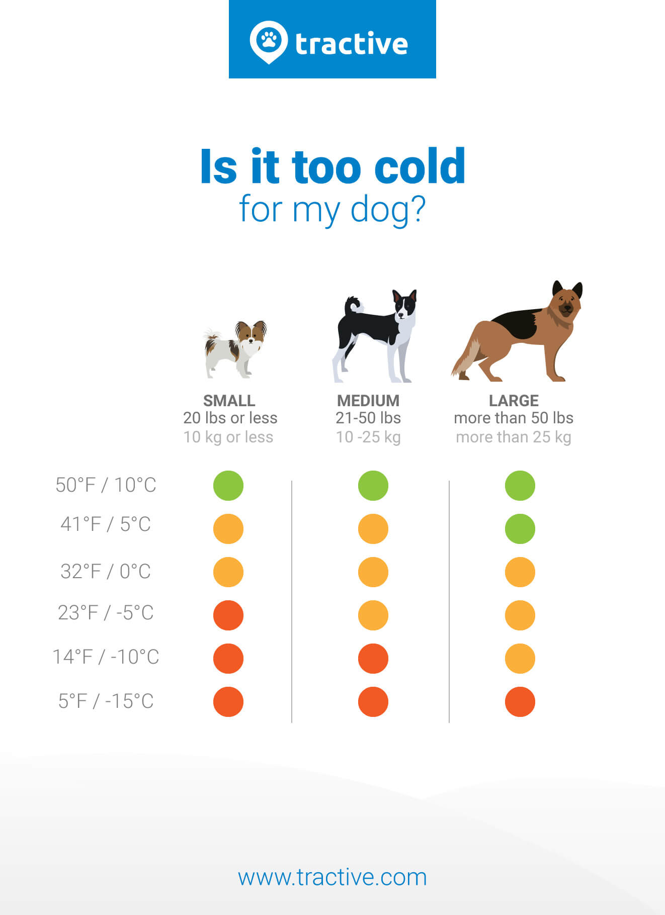 Dogs And Cold Weather Beware Of This