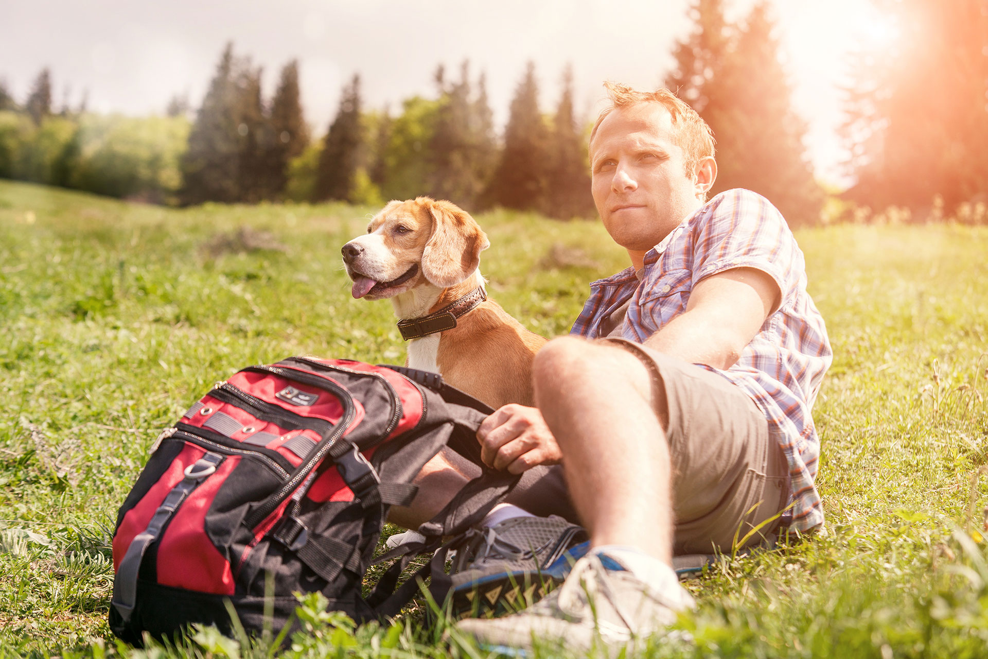 tips for a dog mountain hike
