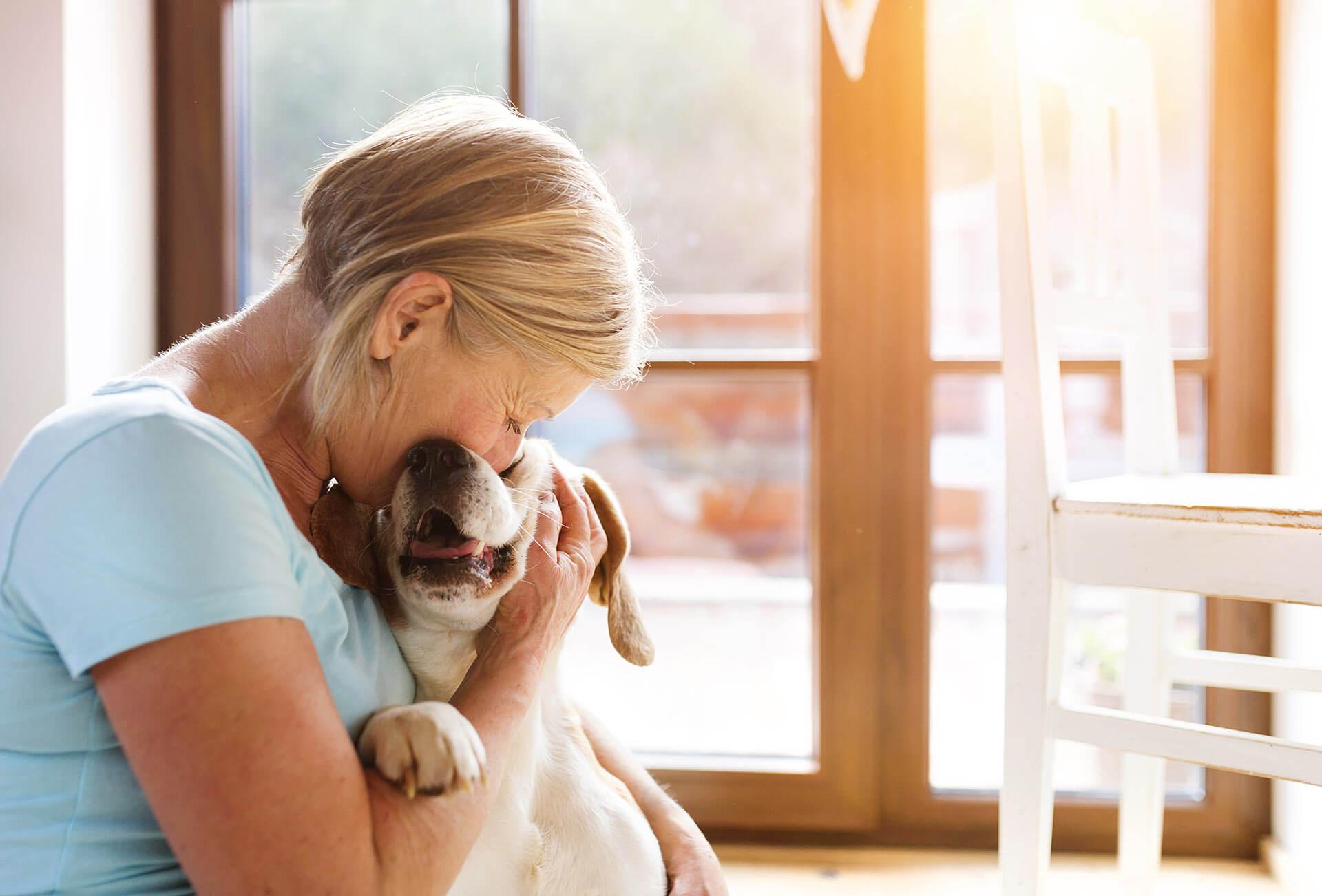Wie man einem Hund beim Abnehmen hilft