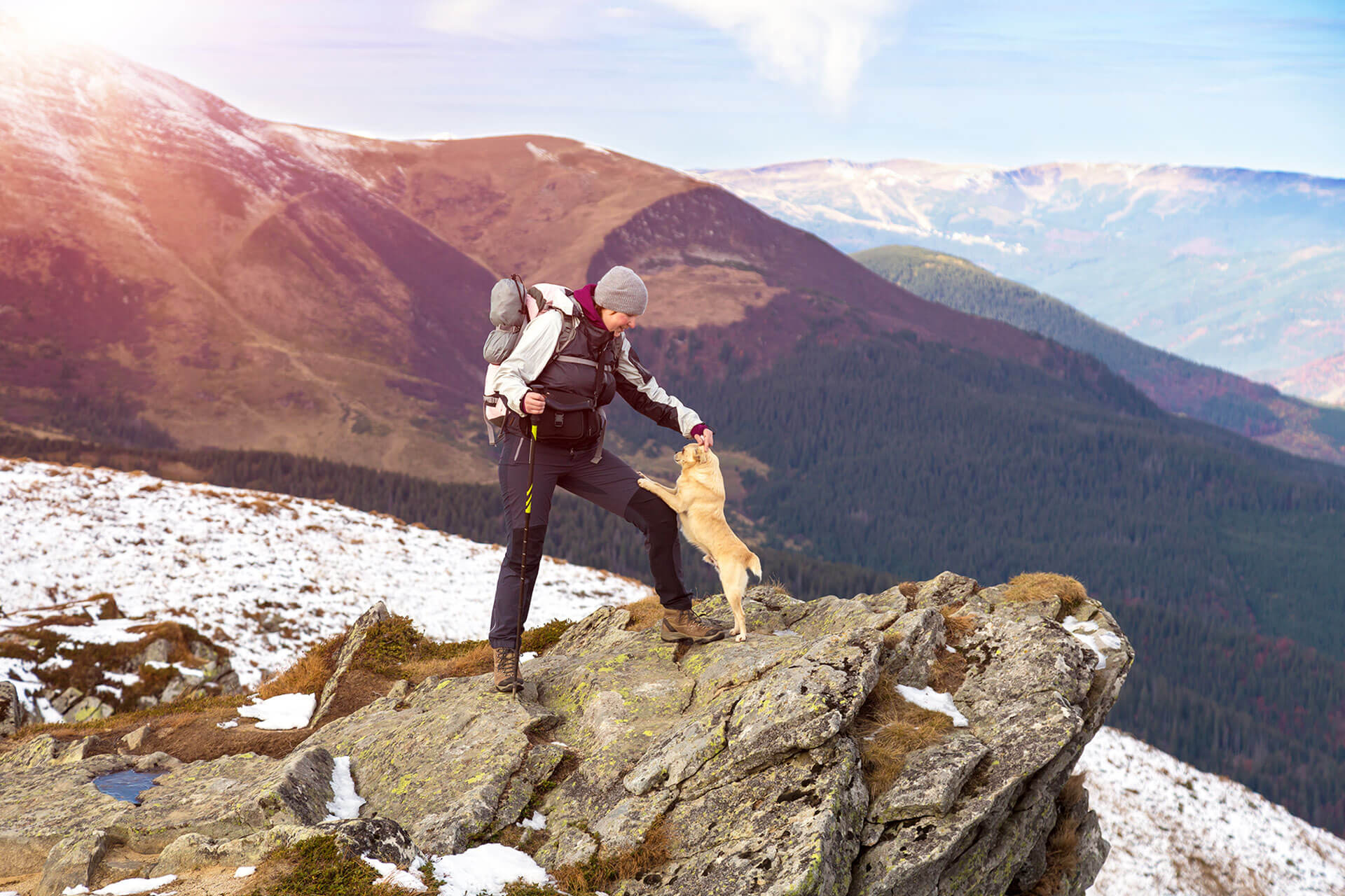 Mountain hike with your dog? These tips will get you through your next outdoor adventure!