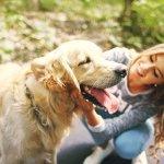 Kommunikation Hund - auf diese Verhaltensregeln musst du aufpassen