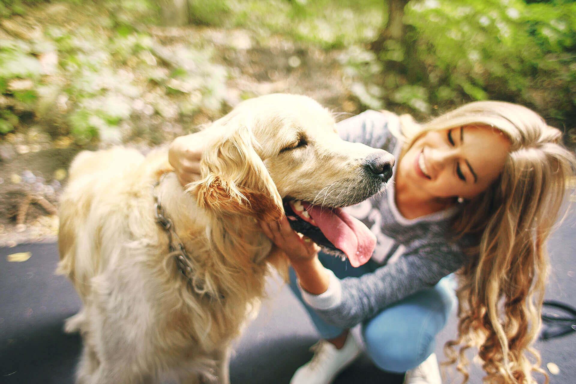 Kommunikation beim Hund: Was gibt es zu beachten?