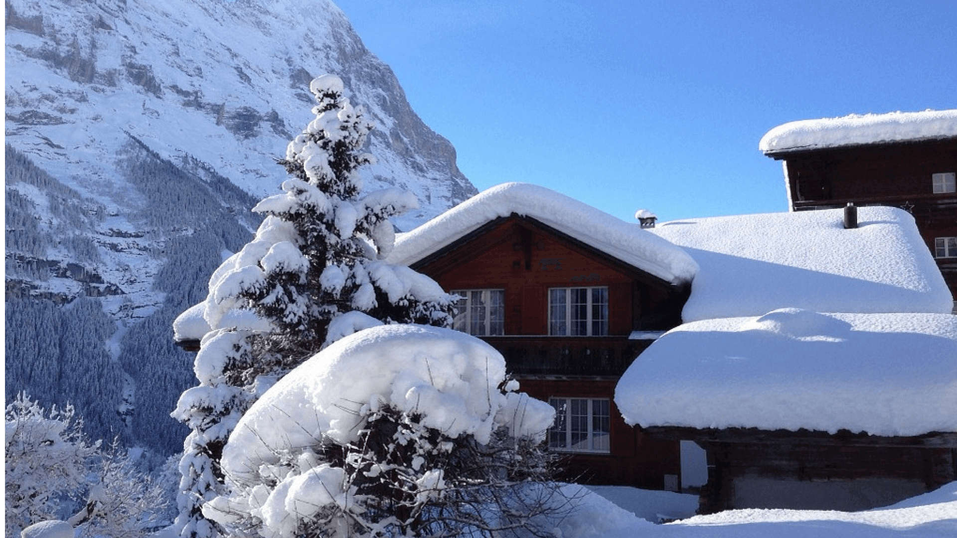 Für unsere Weihnachtsfeier wanderten wir zu einer Hütte