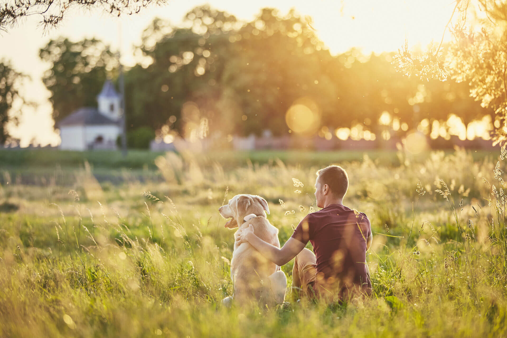 dog wearing GPS dog tracker sitting next to man outside house in field