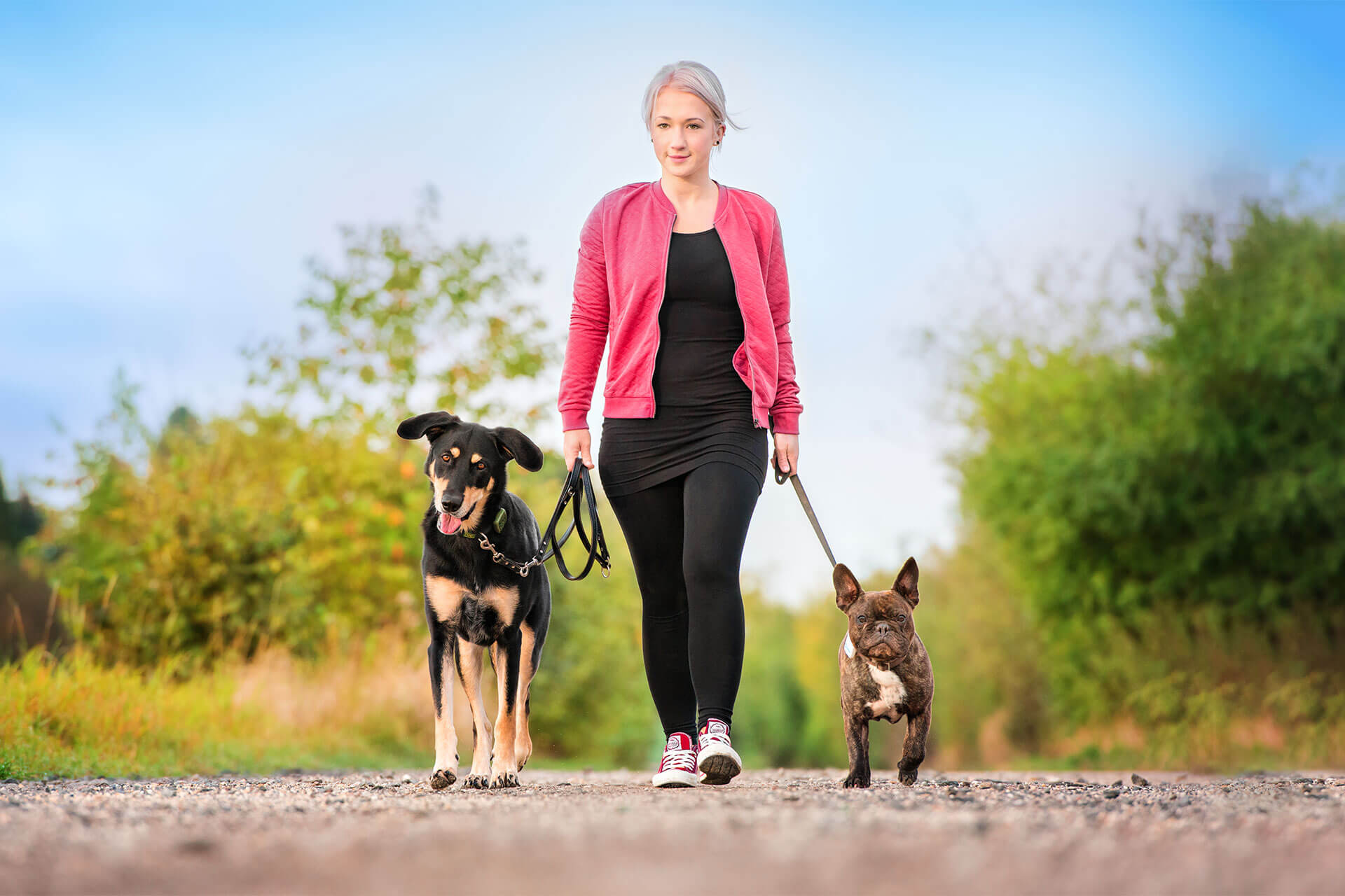 chose the best gps dog tracking device for your furry friend