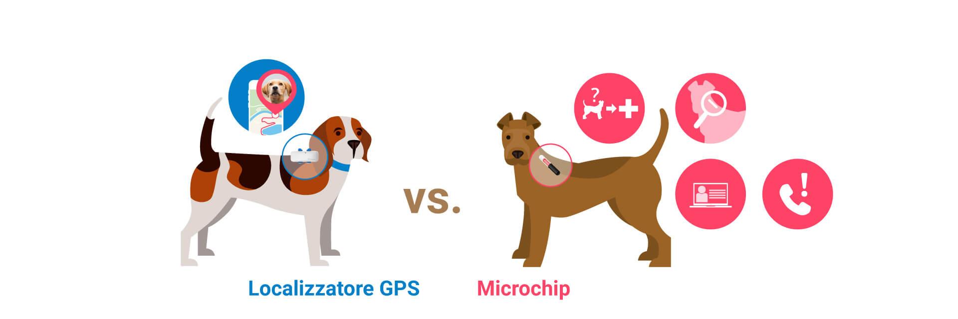 illustrazione di due cani: uno che indossa il microchip per cani e uno che indossa un localizzatore GPS