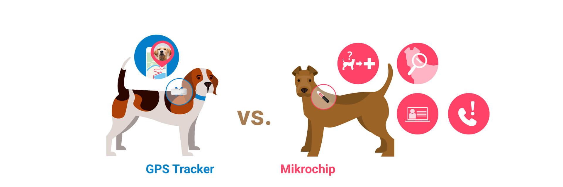 Funktionen von Microchip und GPS Tracker für Hunde