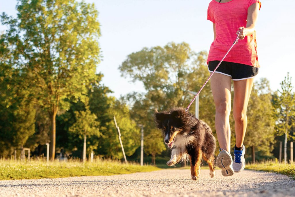 young sporty woman running with dog outside