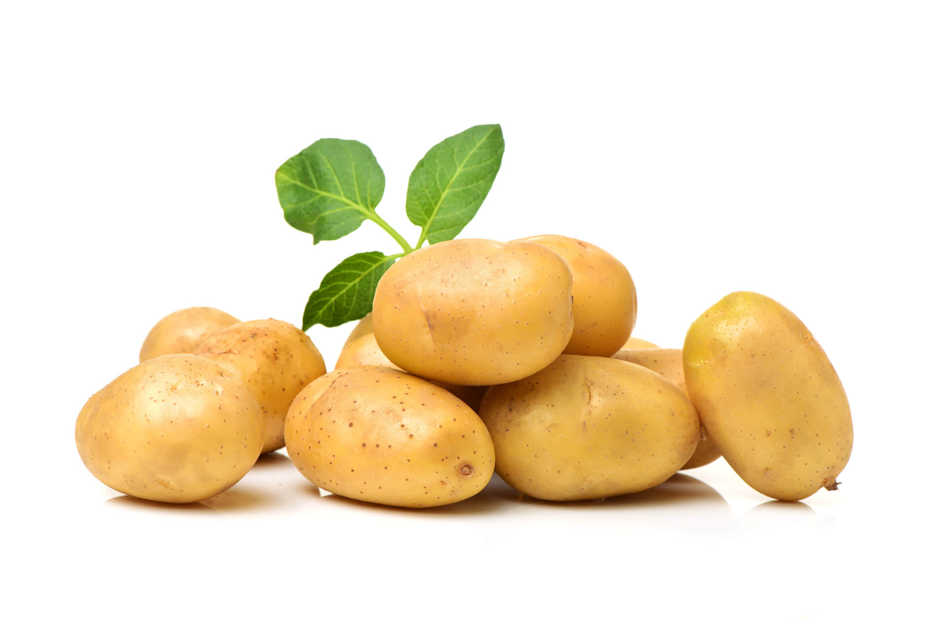 pile of potatoes on white background - what vegetables are safe for dogs?
