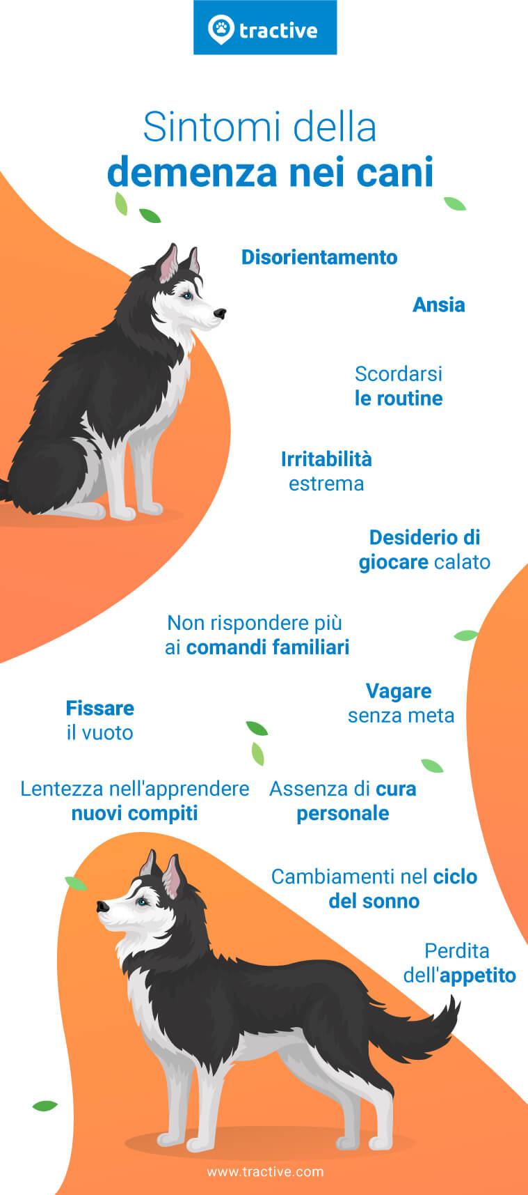 Sintomi che il tuo cane potrebbe presentare