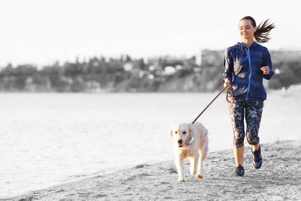 Un chien et sa maîtresse courant sur la plage pour perdre du poids