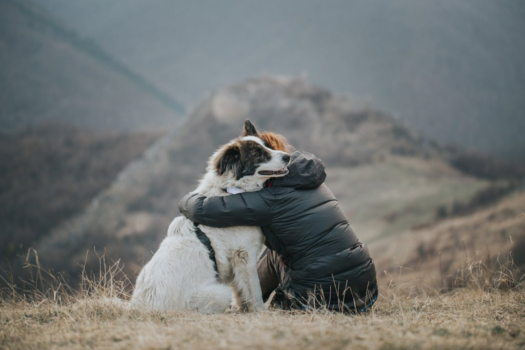 man and dog in embrace - white dog wearing Tractive GPS dog tracker