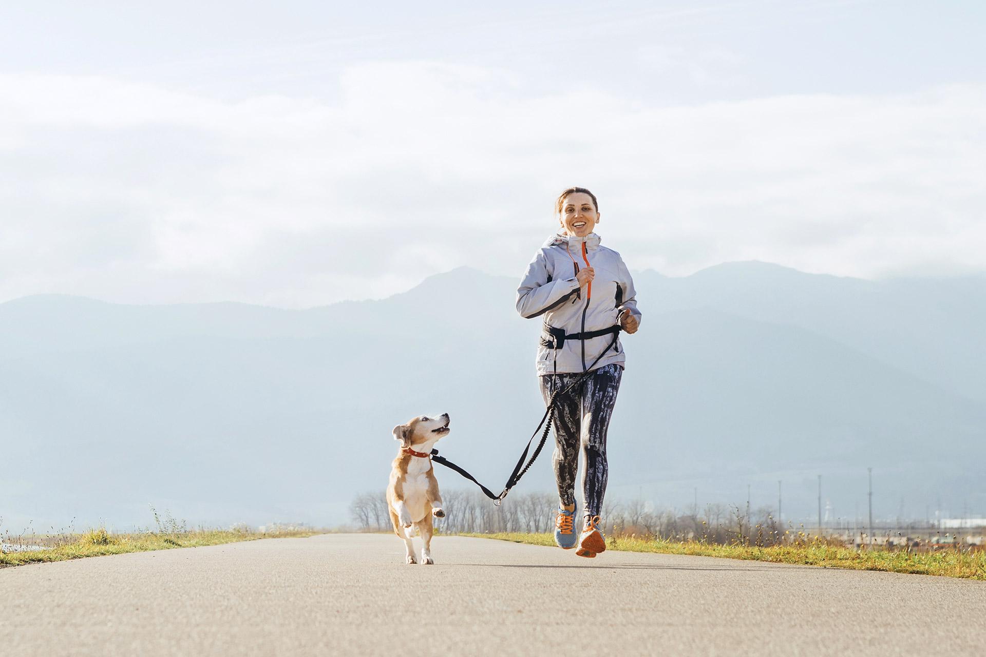 Guía sobre cómo salir a correr con tu perro