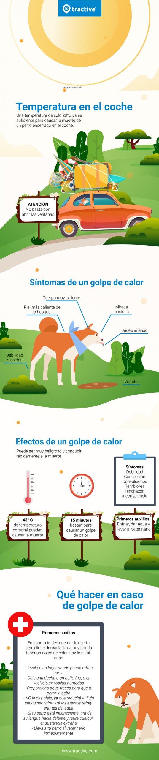 Infografía sobre el golpe de calor en perros: temperaturas, síntomas y tratamiento.