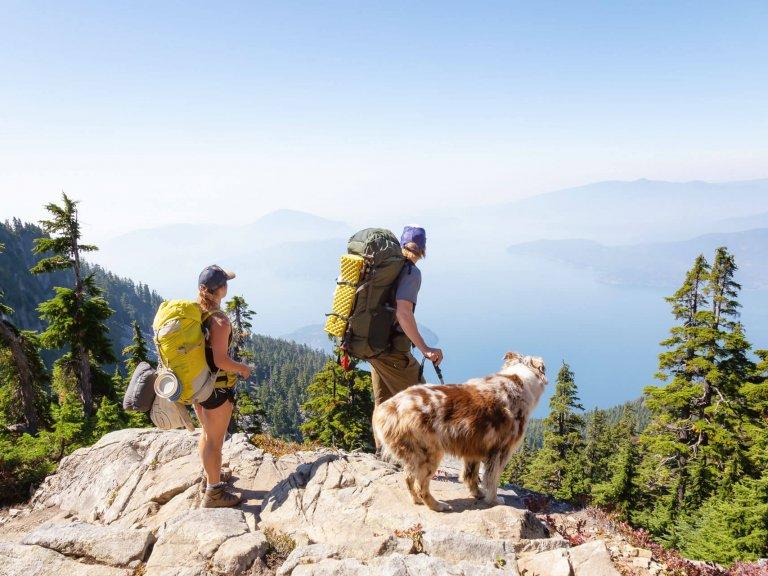 Zwei Wanderer mit Rucksack und Hund stehen auf einem Bergfelsen und genießen das Panorama
