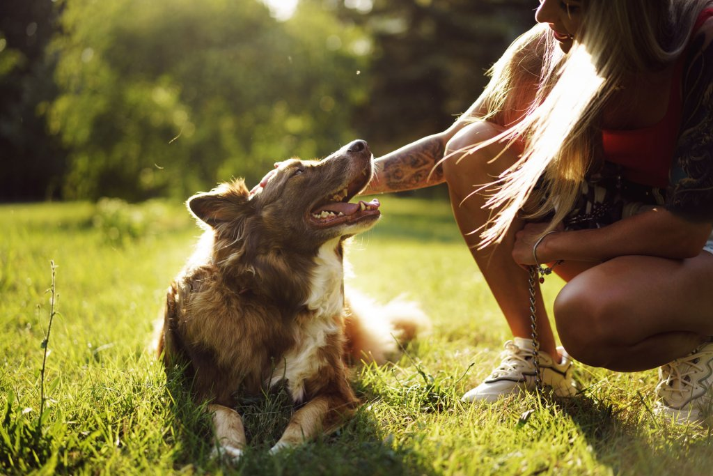 young woman kneeled down petting a brown dog which is laying on the grass outside in a park