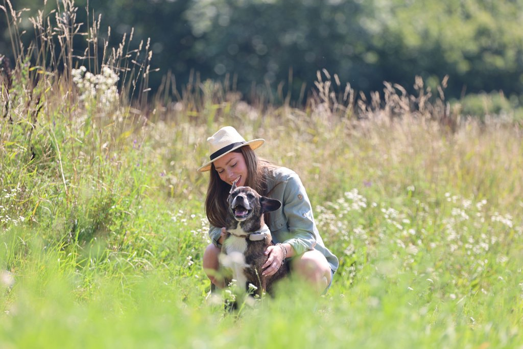 dog wearing gps tracker and young woman kneeling down in a grassy meadow or field