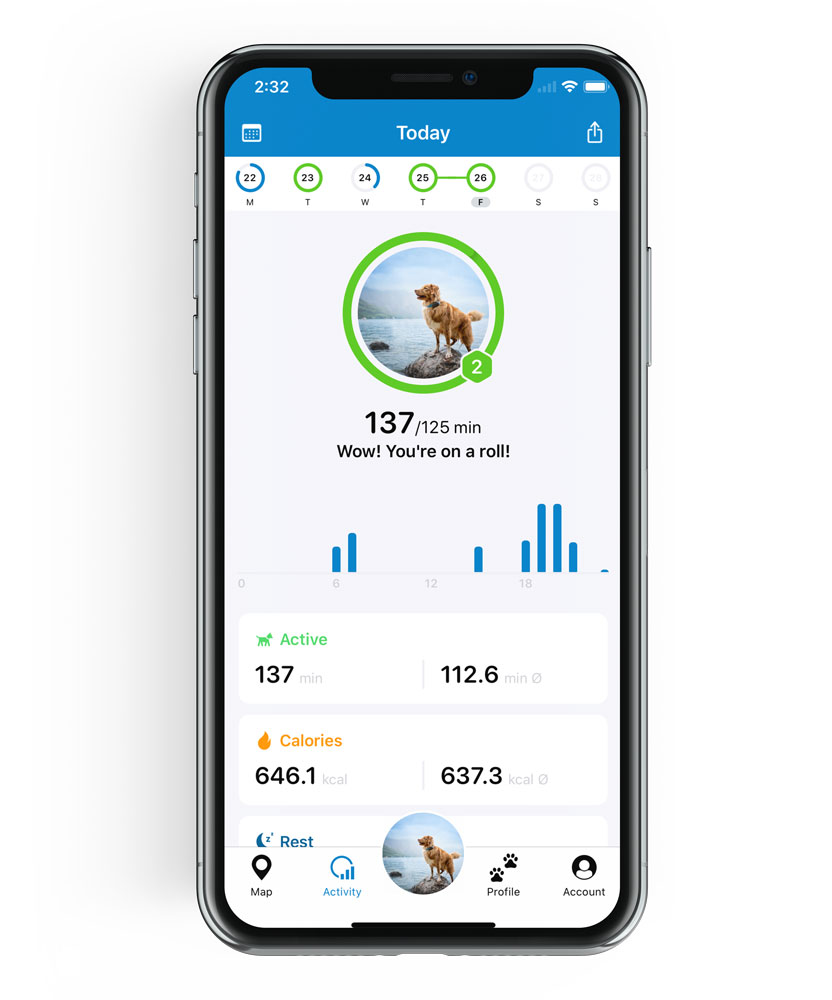 Tractive GPS activity tracking for dogs screenshot of the app