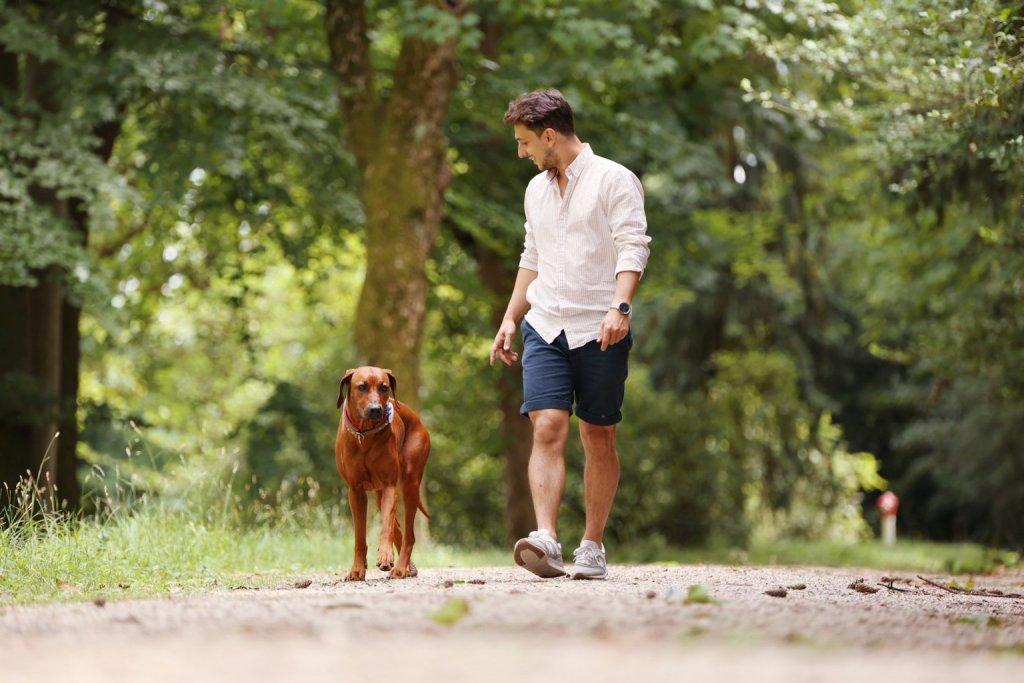 Mann spaziert lächelnd mit rötlich-braunem Hund durch den Wald mit Tracker am Hundehalsband