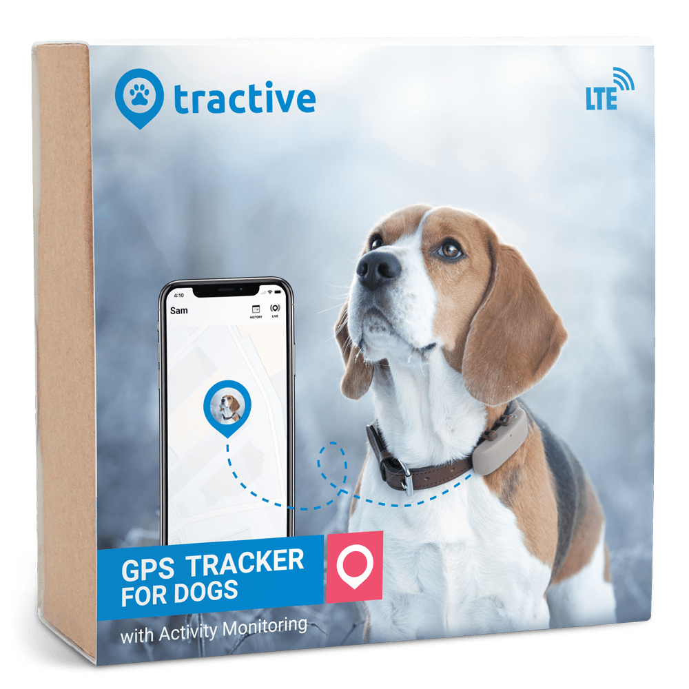 Tractive GPS DOG LTE - US only