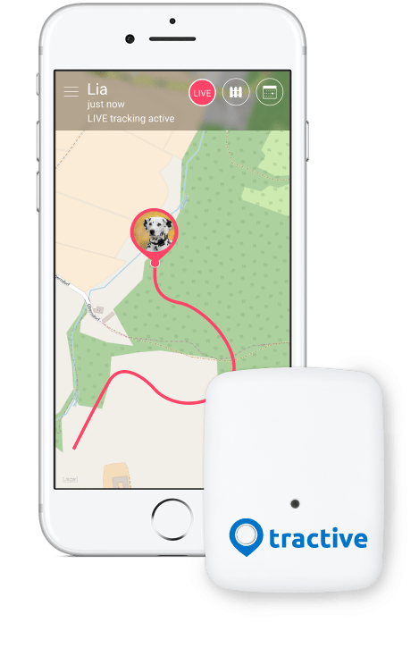 gps ortung für android
