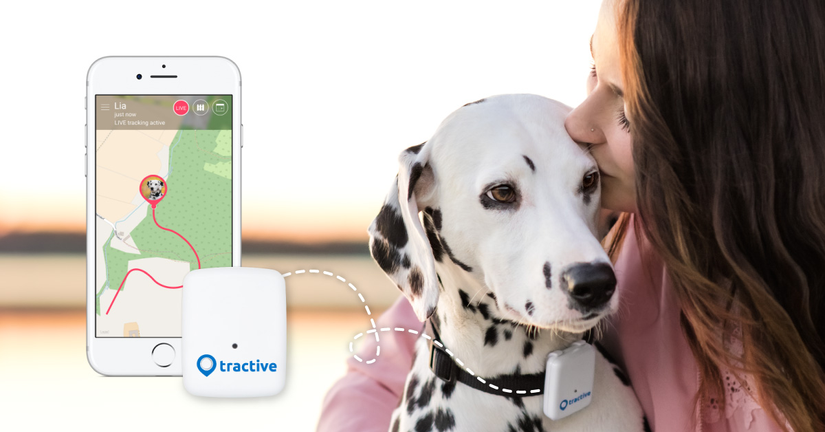 Tractive No 1 Gps Tracker For Dogs And Cats Worldwide