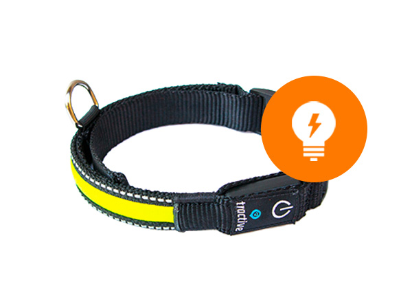 img.alt.led.collar.light.modes