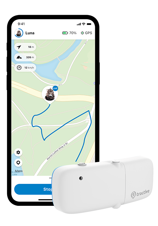 iPhoneX LIVE Tracking mit Tractive Cat Tracker